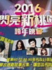 2016闪亮新桃园跨年晚会